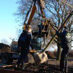 Bomen worden geplant
